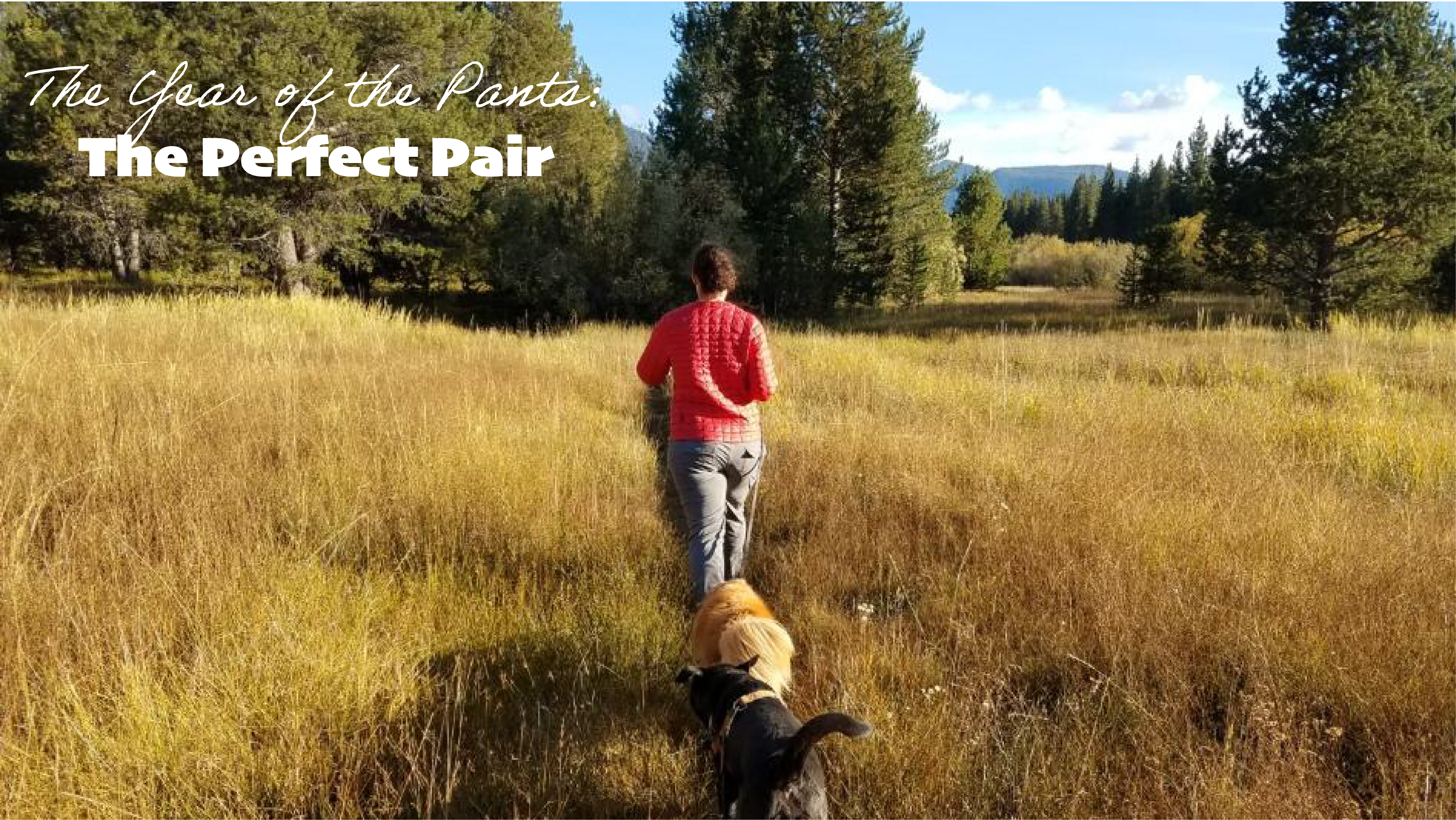The Perfect Pair of Hiking Pants